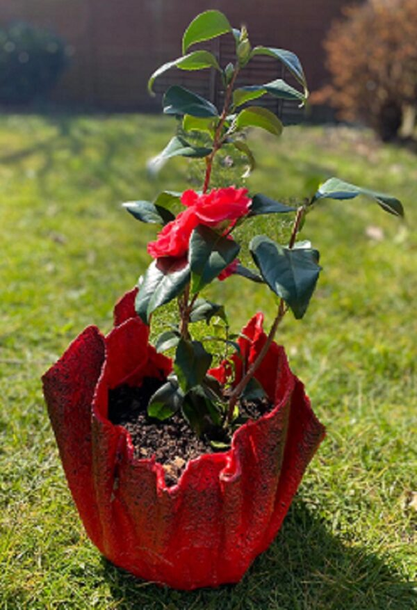 red towel planter